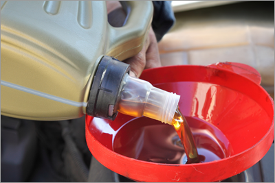 Oil and Fluid Change